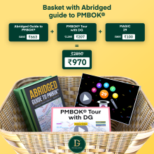 Basket with Abridged Guide to PMBOK®